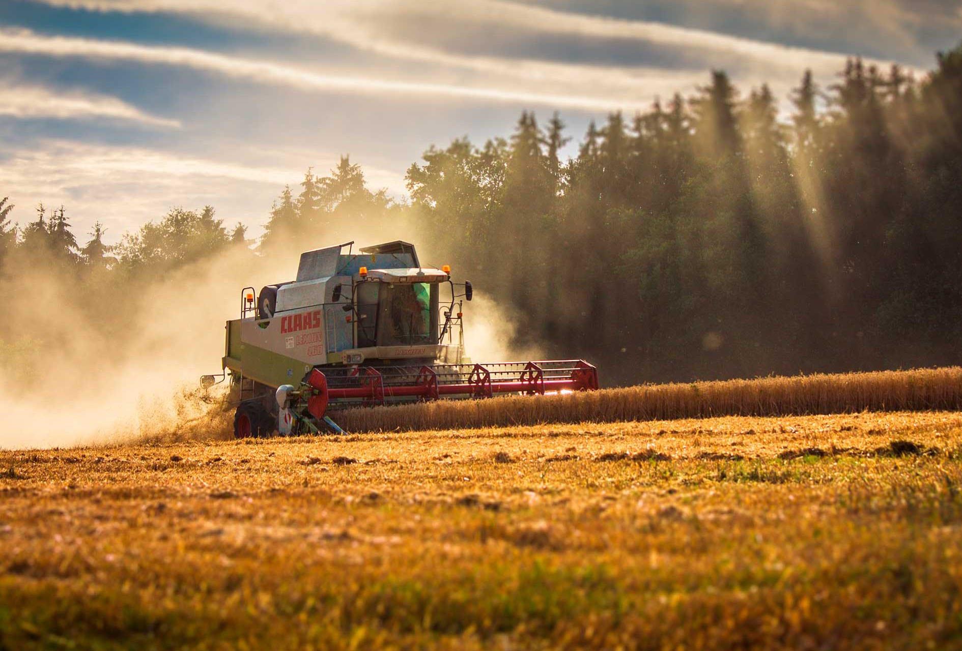 Termografering af landbrug i Skamby